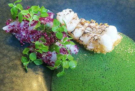 Ceviche langoustine