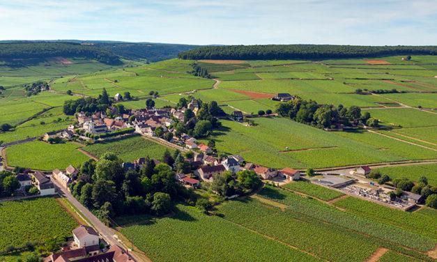 Domaine Comte Senard, Aloxe-Corton