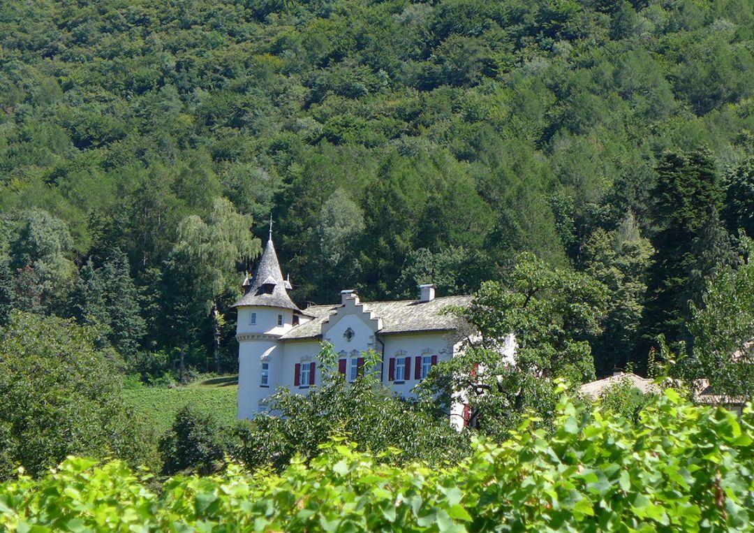 Gottardi, Alto Adige
