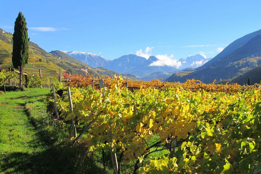 Pfannenstielhof, Alto Adige