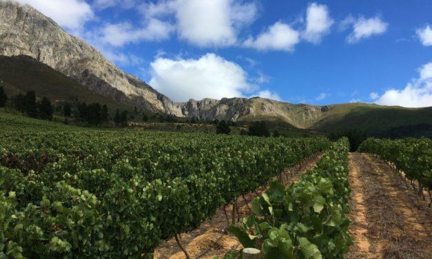 Aventura Exciting Wines