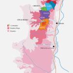 Proef de finalewijnen van het Beaujolais Concours des Grands Vins 2017