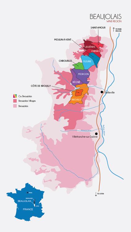 Beaujolais regio