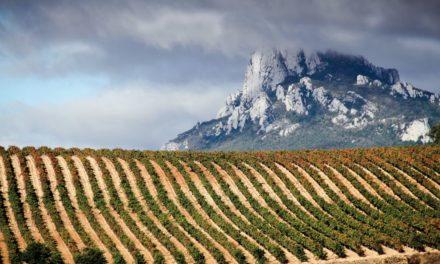 Anfors-Imperial: 200% wijnen met een verhaal