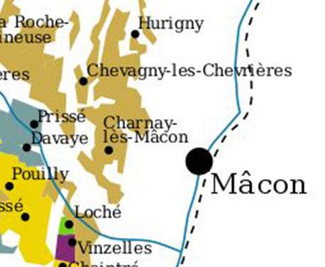 Wijnen uit de Mâconnais: terroir versus stijl