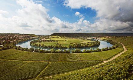 Mainzer Wijnbeurs 2018: betoverend elegante rieslings