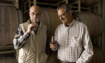 Prestigieus en kleinschalig: HdV Wines