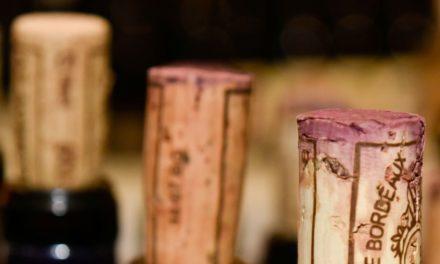 John Bindels – Wijn met drie sterren