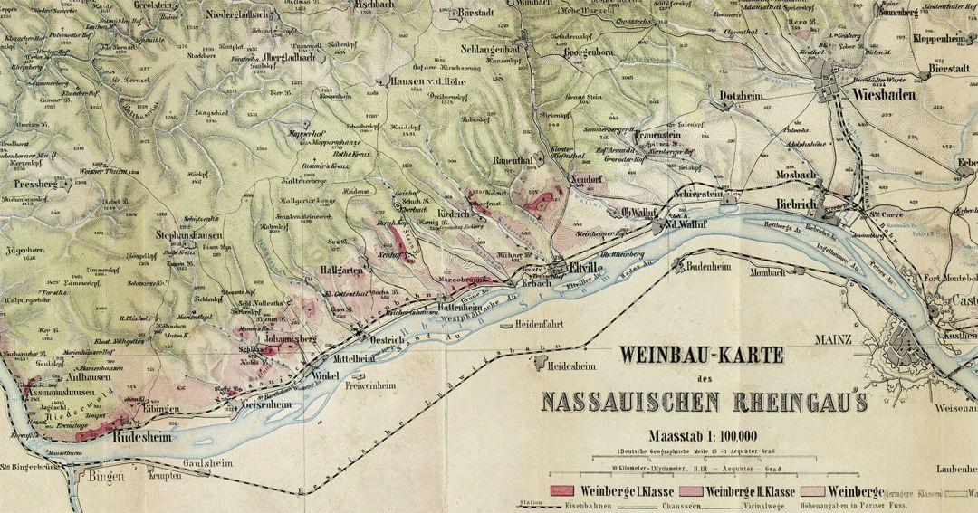 wijnbouw Rheingau