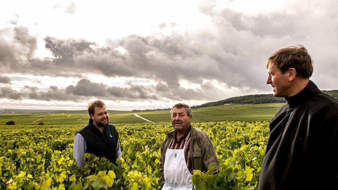Jérôme, François en Rémi Legras
