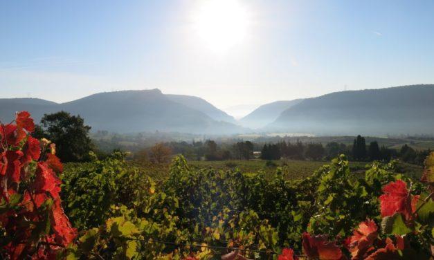 Eric Texier – Domaine de Pergaud, Côtes du Rhône