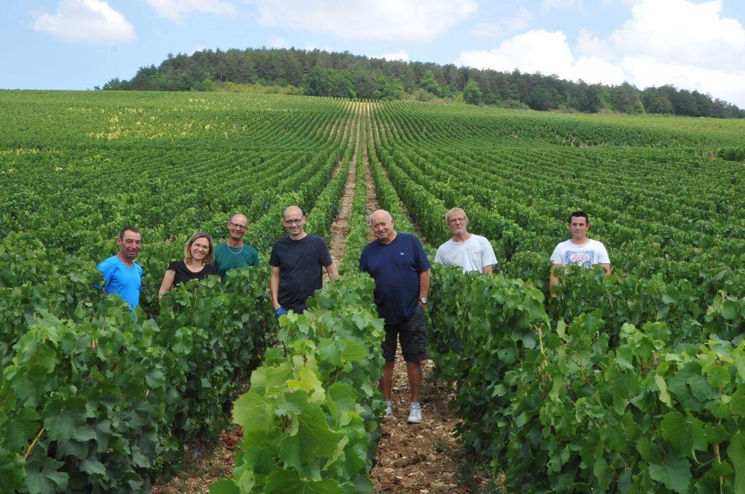 Het team in de wijngaard