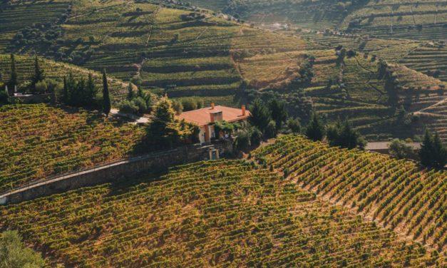 Quinta Vale D. Maria, Douro, Portugal 2002