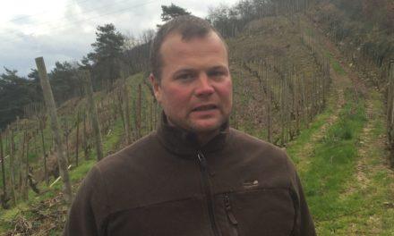 Opkomend Rhône-talent van la Vie le Vin
