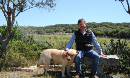 Zeldzame Corsicaanse druivenrassen in het glas
