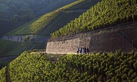 Op reis door de Ahr en de Mittelrhein – deel 2
