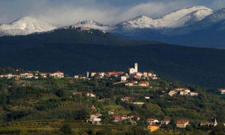 Slovenië, wijnland met een mooie toekomst