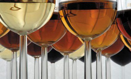 Wine Professional Box – Masters of Jerez