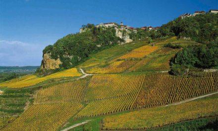 Jura: prachtwijnen voor hedendaagse gastronomie