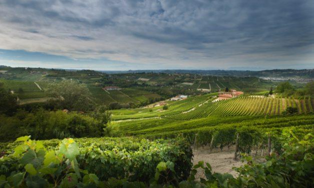 Klassiek tafelen met wijnen van de Vier Heemskinderen