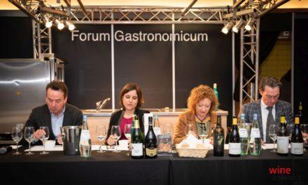Wine Professional 2020: wijnen uit de Méditerranée