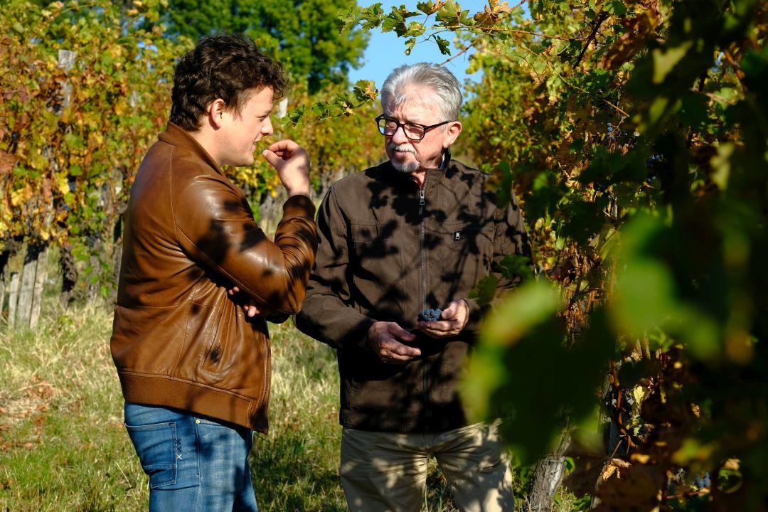 Zsolt jr en Ede Tiffán in de wijngaard