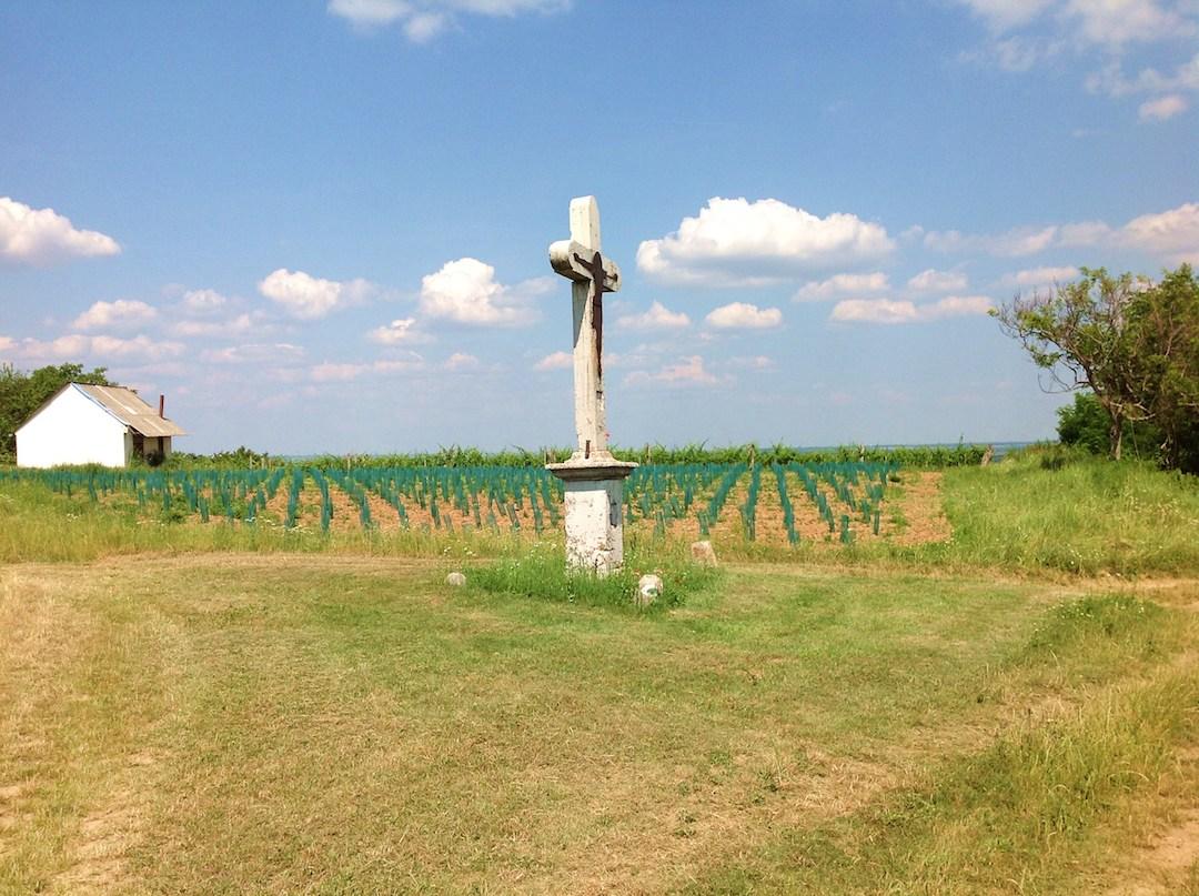 kruis naast de wijngaard