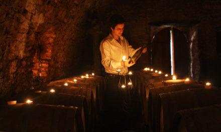 Wine Professional: Batič & RIJKS®