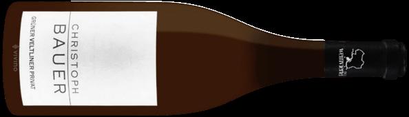 Bauer GV M