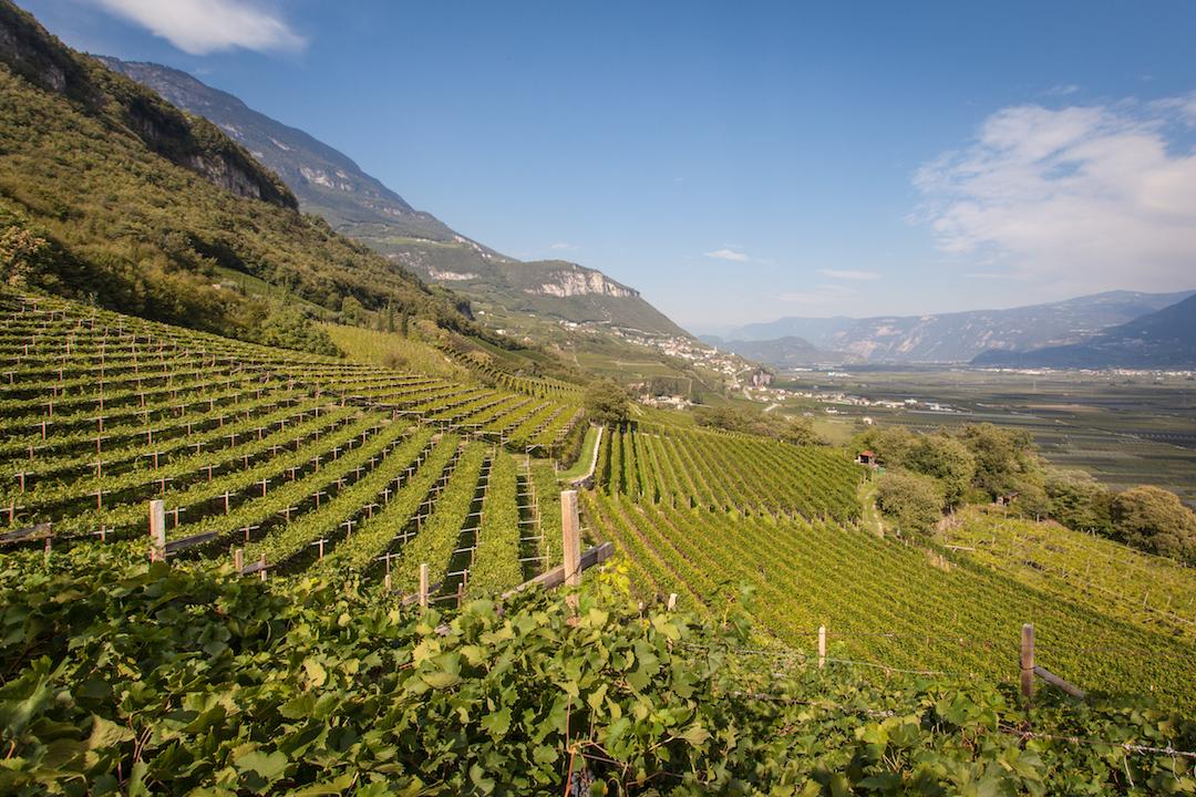 Nals Margreid, Alto Adige