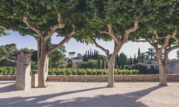Domaines Ott presenteert nieuwe icoonwijn