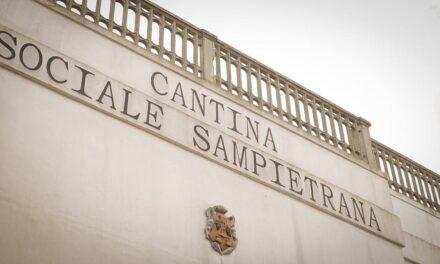 Settebraccia, Cantina Sampietrana, IGP Salento, Italië 2014