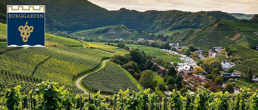 Weingut Burggarten, Ahr