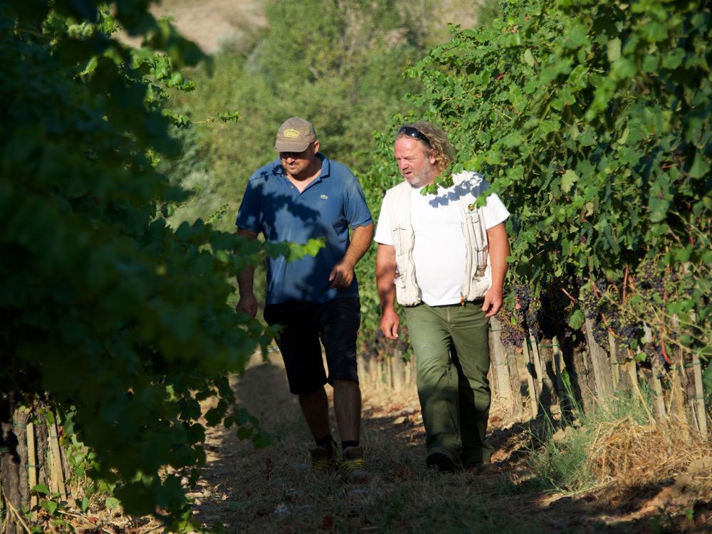 Wijngaarden Cantina LaSelva