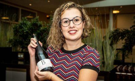 Wine Professional Box – Rijkhoff Wijnen