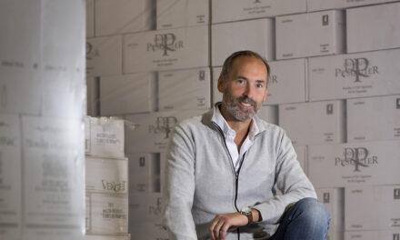 Wine Professional Box – Wijnkoperij Okhuysen