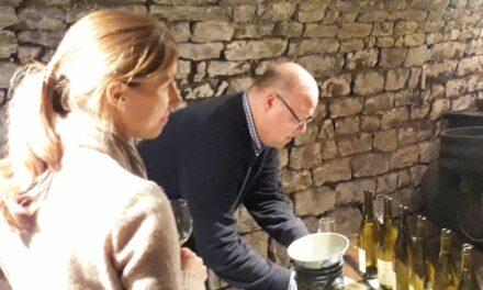 Wine Professional Box – Het Wijnmagazijn