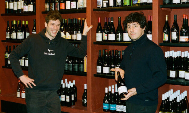 Wine Professional Box – Troppo Giovane
