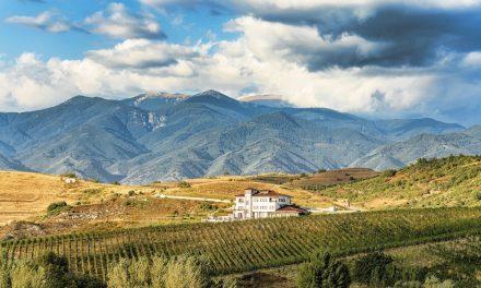 Moderne Bulgaarse wijnen van Villa Melnik