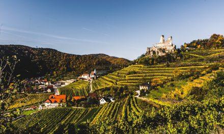 Alte Reben Grüner Veltliner, Weingut Nigl, Kremstal, Oostenrijk 2016