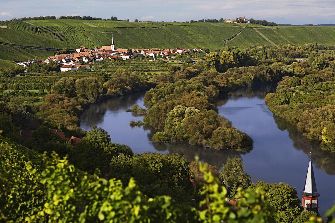 Wijnstreek Franken