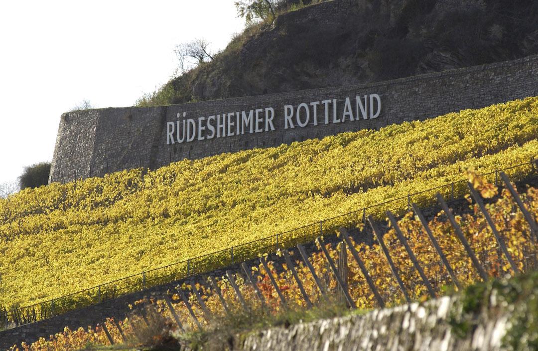 Rheingau Rüdesheim